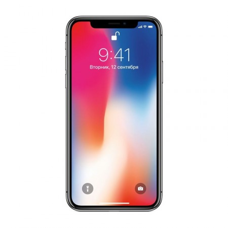Смартфон Apple iPhone X 256 Space Gray фото 1